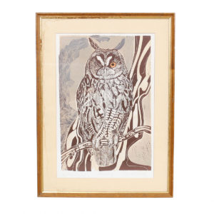Artist's Proof Long Eared Owl by Robert R Greenhalf